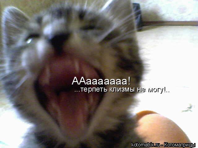 Котоматрица: ААааааааа! ...терпеть клизмы не могу!..