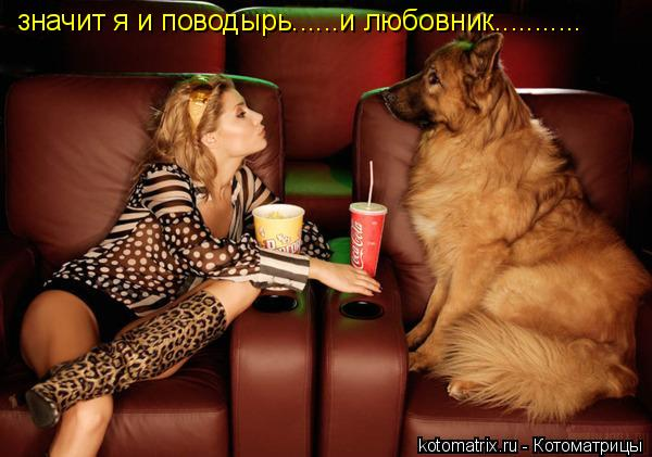 Котоматрица: значит я и поводырь......и любовник...........