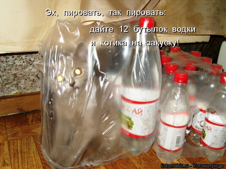 Котоматрица: дайте  12  бутылок  водки Эх,  пировать,  так  пировать: и  котика  на  закуску!