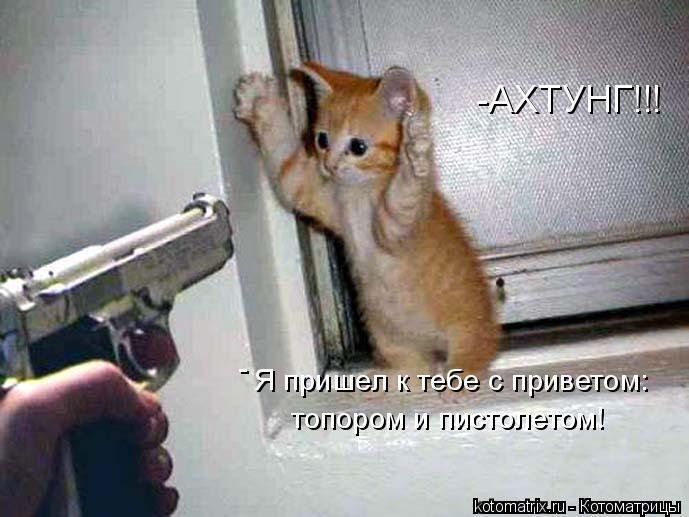 Котоматрица: Я пришел к тебе с приветом: топором и пистолетом! - -АХТУНГ!!!