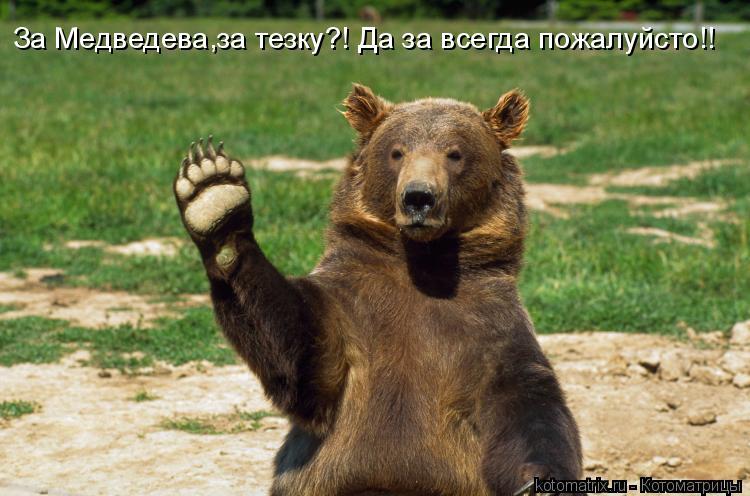Котоматрица: За Медведева,за тезку?! Да за всегда пожалуйсто!!