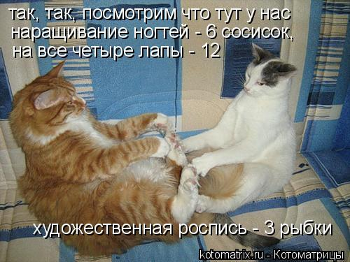 Котоматрица: так, так, посмотрим что тут у нас на все четыре лапы - 12 наращивание ногтей - 6 сосисок,  художественная роспись - 3 рыбки