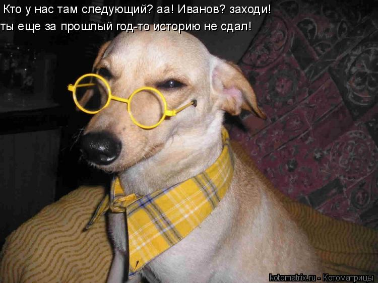 Котоматрица: Кто у нас там следующий? аа! Иванов? заходи!  ты еще за прошлый год-то историю не сдал!