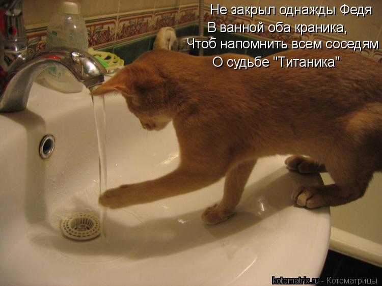 """Котоматрица: Не закрыл однажды Федя  В ванной оба краника,   Чтоб напомнить всем соседям    О судьбе """"Титаника"""""""