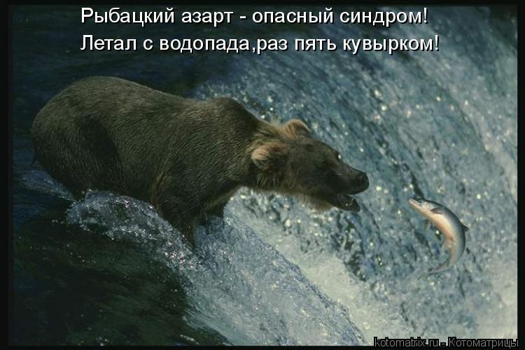 Котоматрица: Рыбацкий азарт - опасный синдром! Летал с водопада,раз пять кувырком!