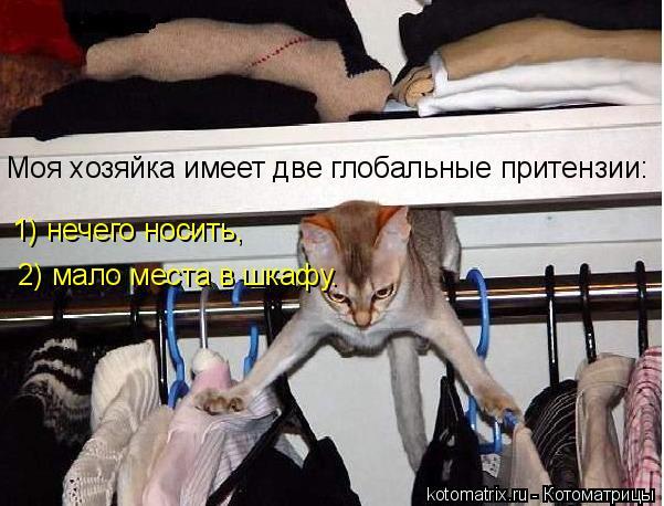 Котоматрица: Моя хозяйка имеет две глобальные притензии: 1) нечего носить, 2) мало места в шкафу.