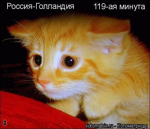 Котоматрица: Россия-Голландия 119-ая минута