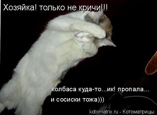 Котоматрица: Хозяйка! только не кричи!!!   колбаса куда-то...ик! пропала... и сосиски тожа)))