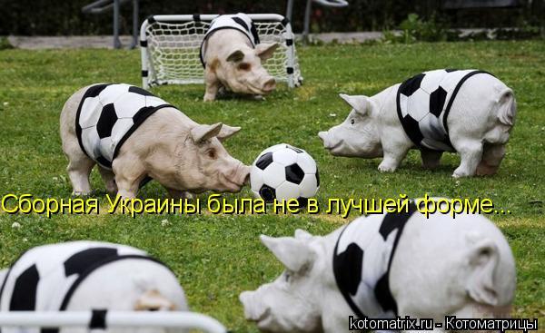 Котоматрица: Сборная Украины была не в лучшей форме...