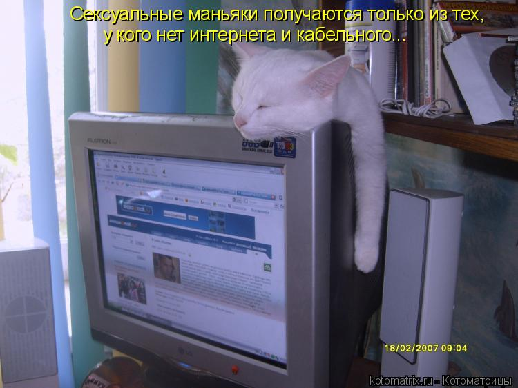 Котоматрица: Сексуальные маньяки получаются только из тех,  у кого нет интернета и кабельного...