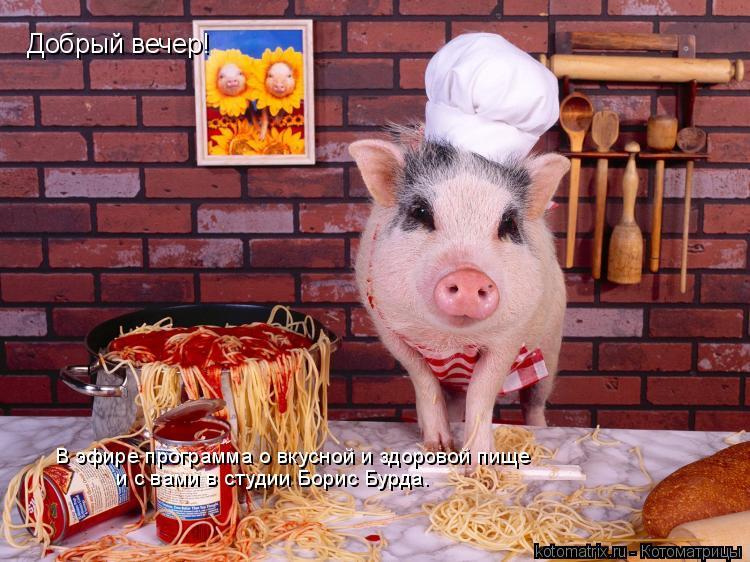 Котоматрица: Добрый вечер! В эфире программа о вкусной и здоровой пище   и с вами в студии Борис Бурда.