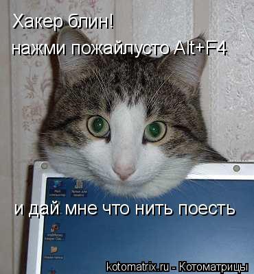 Котоматрица: Хакер блин!  нажми пожайлустo Alt+F4 и дай мне что нить поесть