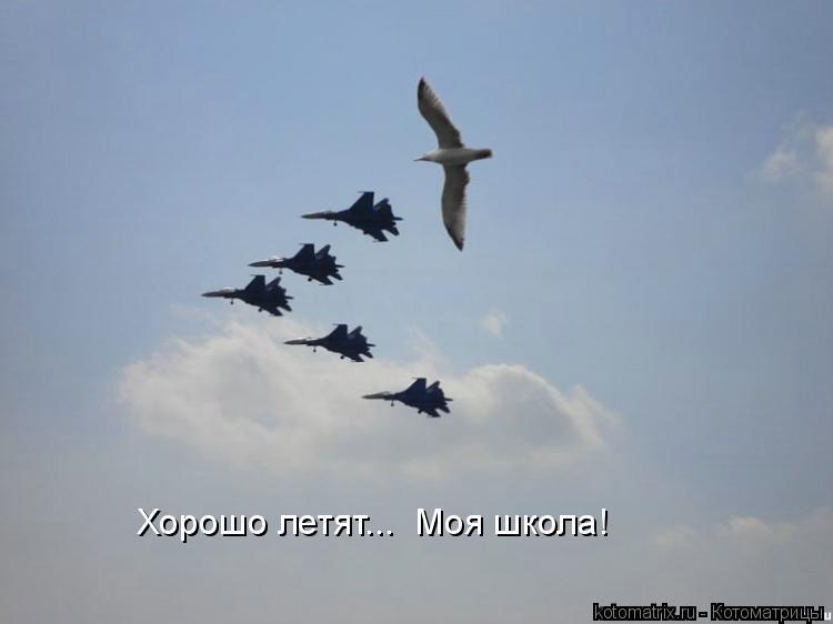 Котоматрица: Хорошо летят...  Моя школа!