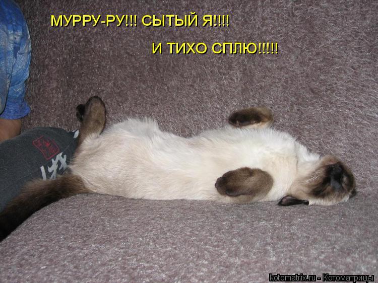 Котоматрица: МУРРУ-РУ!!! СЫТЫЙ Я!!!! И ТИХО СПЛЮ!!!!!