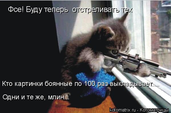 Котоматрица: Фсе! Буду теперь  отстреливать тех Кто картинки боянные по 100 раз выкладывает.... Одни и те же, млин...
