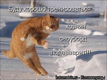 Котоматрица: Буду хорошо тренироваться - хозяин сноуборд подаааарит!!!