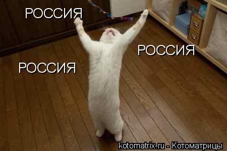 Котоматрица: РОССИЯ РОССИЯ РОССИЯ