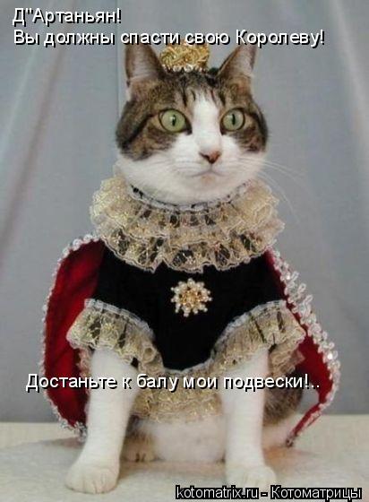 """Котоматрица: Д""""Артаньян! Вы должны спасти свою Королеву! Достаньте к балу мои подвески!.."""