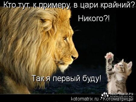 Котоматрица: Кто тут, к примеру, в цари крайний?  Никого?!  Так я первый буду!