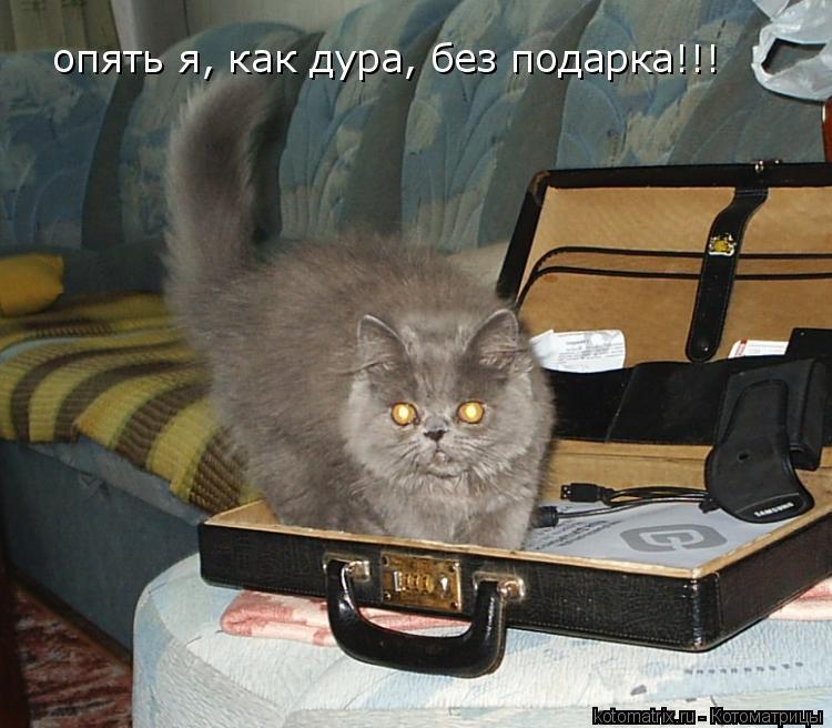 Котоматрица: опять я, как дура, без подарка!!!
