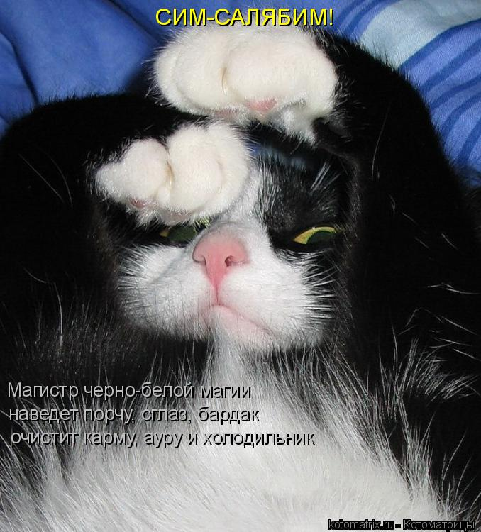 http://www.kotomatrix.ru/images/lolz/2008/06/29/DF.jpg