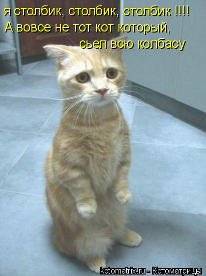 Котоматрица: я столбик, столбик, столбик !!!! А вовсе не тот кот который, сьел всю колбасу