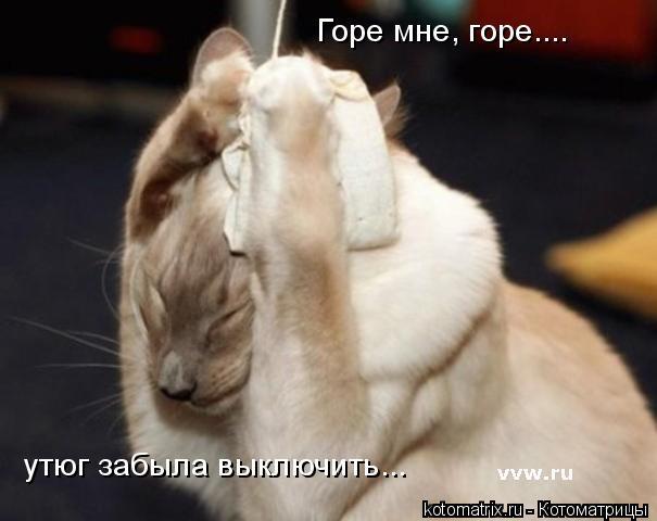 Котоматрица: Горе мне, горе.... утюг забыла выключить...