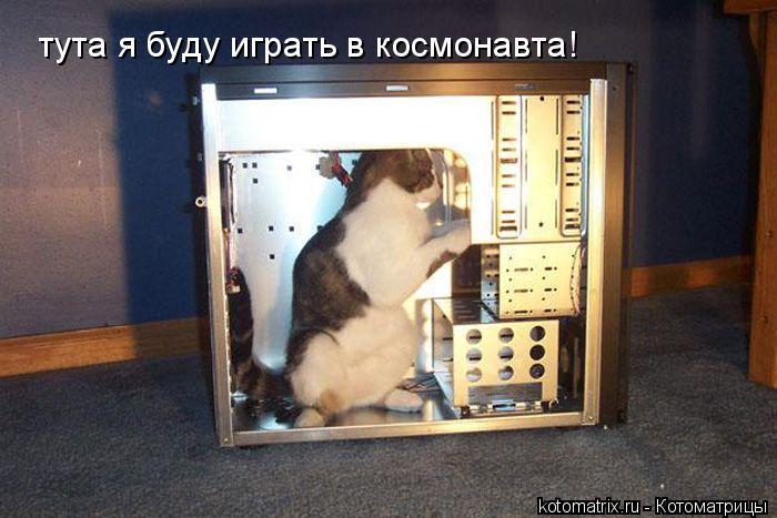 Котоматрица: тута я буду играть в космонавта!