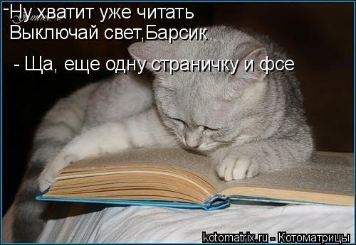 Котоматрица: Ну хватит уже читать Выключай свет,Барсик - - Ща, еще одну страничку и фсе