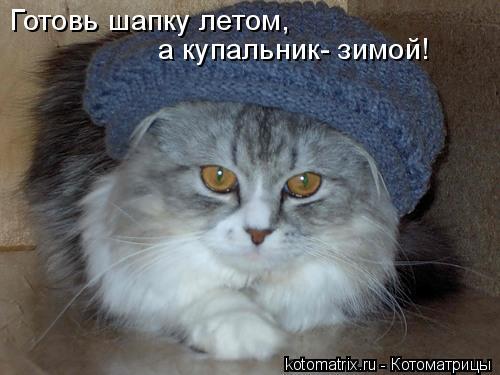 Котоматрица: Готовь шапку летом, а купальник- зимой!
