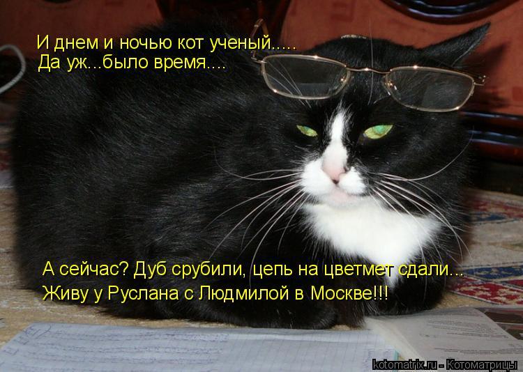 Котоматрица: И днем и ночью кот ученый..... Да уж...было время.... А сейчас? Дуб срубили, цепь на цветмет сдали... Живу у Руслана с Людмилой в Москве!!!