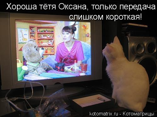 Котоматрица: Хороша тётя Оксана, только передача  слишком короткая!