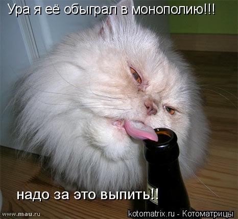 Котоматрица: Ура я её обыграл в монополию!!! надо за это выпить!!