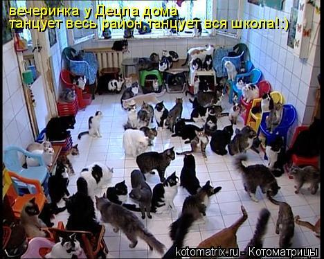 Котоматрица: вечеринка у Децла дома танцует весь район,танцует вся школа!:)