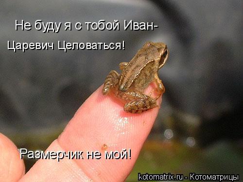 Котоматрица: Размерчик не мой! Не буду я с тобой Иван- Царевич Целоваться!