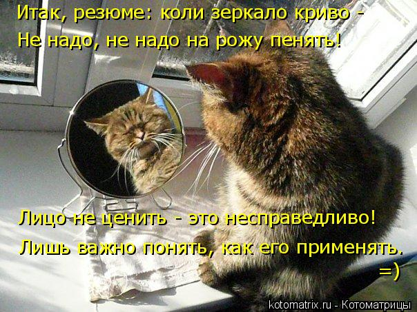 Котоматрица: Итак, резюме: коли зеркало криво -  Не надо, не надо на рожу пенять! Лицо не ценить - это несправедливо! Лишь важно понять, как его применять.  =)