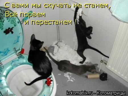 Котоматрица: С вами мы скучать не станем, Всё порвем и перестанем !