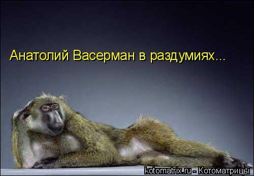 Котоматрица: Анатолий Васерман в раздумиях...