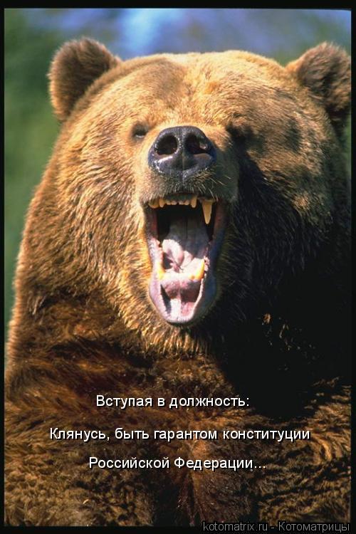 Котоматрица: Клянусь, быть гарантом конституции  Вступая в должность: Российской Федерации...