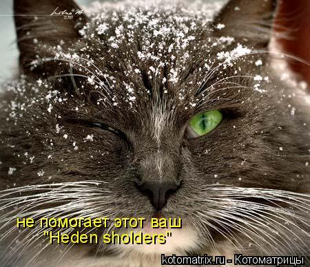 """Котоматрица: не помогает этот ваш """"Heden sholders"""""""
