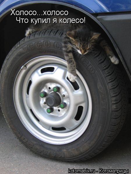 Котоматрица: Холосо...холосо Что купил я колесо!