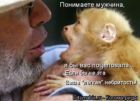 """Котоматрица: Понимаете мужчина, я бы вас поцеловала... Если бы не эта  Ваша """"лёгкая"""" небритость!"""