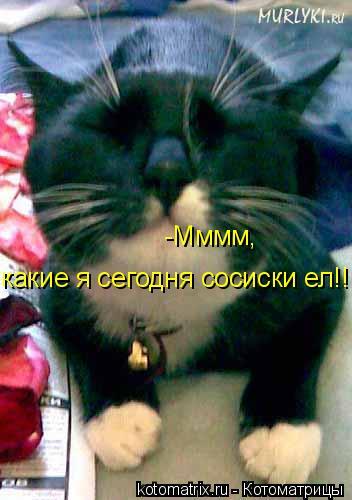 Котоматрица: -Мммм, какие я сегодня сосиски ел!!!
