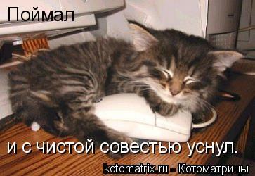 Котоматрица: Поймал и с чистой совестью уснул.