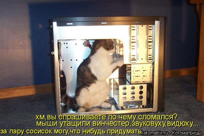Котоматрица: хм,вы спрашиваете по чему сломался? мыши утащили винчестер,звуковуху,видюху... за пару сосисок могу,что нибудь придумать...