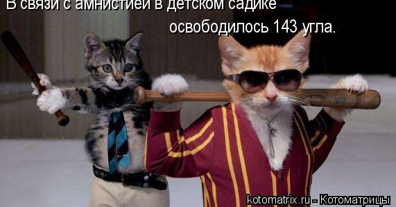 Котоматрица: В связи с амнистией в детском садике  освободилось 143 угла.