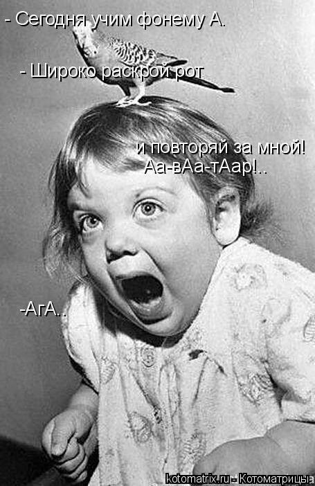 Котоматрица: - Сегодня учим фонему А. - Широко раскрой рот  и повторяй за мной! Аа-вАа-тАар!.. -АгА..