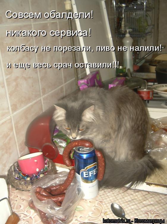 Котоматрица: Cовсем обалдели! никакого сервиса! колбасу не порезали, пиво не налили! и еще весь срач оставили!!!