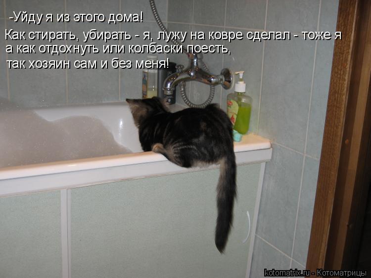 Котоматрица: -Уйду я из этого дома! Как стирать, убирать - я, лужу на ковре сделал - тоже я а как отдохнуть или колбаски поесть, так хозяин сам и без меня!