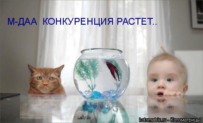 Котоматрица: М-ДАА  КОНКУРЕНЦИЯ РАСТЕТ..
